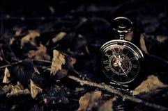 滴答声Tock -与秋天叶子的葡萄酒怀表 免版税库存图片