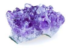 紫色 免版税库存照片