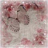 蝴蝶和兰花花背景 图库摄影