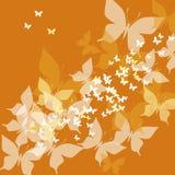 蝴蝶桔子 免版税库存图片