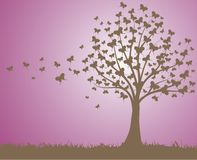 蝴蝶结构树 图库摄影