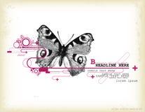 蝴蝶设计要素 免版税库存图片