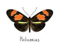 蝴蝶heliconius模仿水彩 免版税库存照片