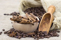 茴香豆桂香咖啡棍子 库存照片