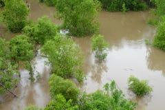 洪水中西部 库存照片