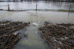 洪水 图库摄影