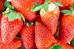0个JPG味道好的草莓 免版税图库摄影