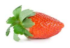 0个JPG水多的草莓 库存图片