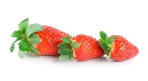 0 φράουλες τρεις jpg Στοκ φωτογραφία με δικαίωμα ελεύθερης χρήσης