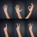 0 5 mains de compte à la femme Photographie stock libre de droits