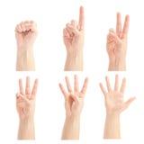 0 man för 5 räknande händer till Arkivbilder