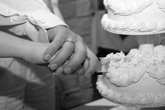 001个蛋糕婚礼 免版税图库摄影