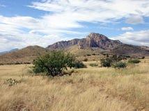 001亚利桑那牧场 免版税库存图片