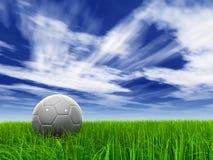 001 006 sky för 9000 gräs Royaltyfri Foto