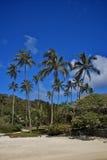 001 fransman polynesia Arkivbilder