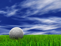 001 (a) grass at 9000 and sky 008 (a) Royalty Free Stock Images