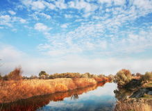 001 horizontaux d'automne Photographie stock