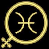001 pisces zodiac Royaltyfri Fotografi
