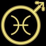 002 pisces zodiac Royaltyfria Foton