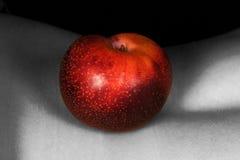 003 Eden Zdjęcie Royalty Free