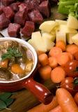 004牛肉自创炖煮的食物 免版税库存照片