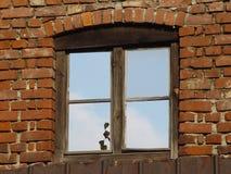 005 okno Obrazy Royalty Free