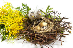 009 Easter Obraz Stock