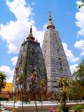 01位佛教徒stupa 免版税库存照片
