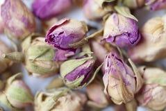 01干燥叶子玫瑰色茶 库存照片