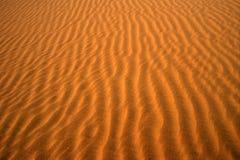 01沙漠 免版税库存图片