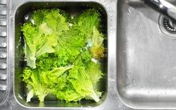 01清洗的食物 图库摄影