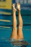 01游泳同步 免版税库存图片