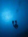01潜水员 库存照片