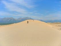 01片沙漠横向taiga 库存图片