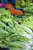 01系列停转蔬菜 免版税库存图片