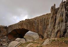 01自然的桥梁 库存照片