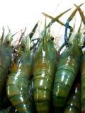 01食物虾 免版税库存照片