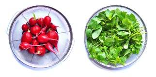 01 λαχανικά Στοκ Φωτογραφίες