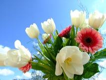 01 λουλούδια Στοκ Φωτογραφία