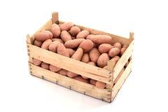 01 πατάτες Στοκ Φωτογραφία