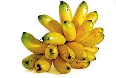 01 σειρές μπανανών Στοκ Εικόνα