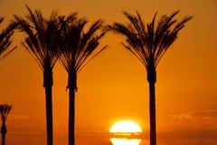 01 восход солнца vegas Стоковая Фотография RF