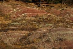 01 неплодородная почва Стоковое Изображение RF