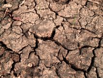 01 треснутая почва Стоковые Изображения