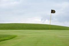 01高尔夫球绿色 库存照片