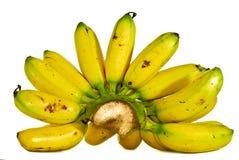 01 bananowa seria Obrazy Royalty Free