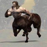 01 centaur Obrazy Royalty Free