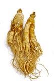 01 ginseng ziele tradycyjny Obrazy Royalty Free
