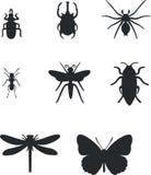 01 insekta set Zdjęcia Stock