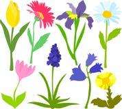 01 kwiatu set ilustracja wektor